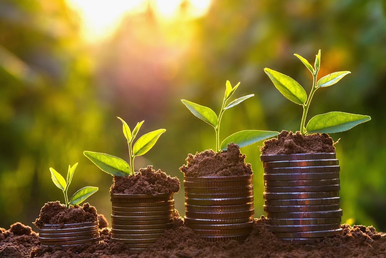Most Profitable Franchises: Top 10 Factors that Yield Profits